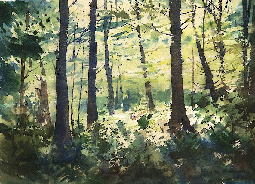 Bush Clearing Eglinton Watercolour